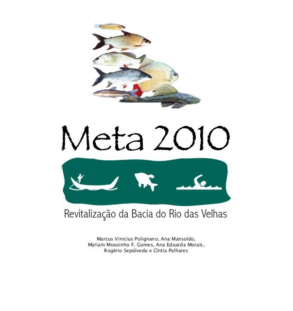 capa meta 2010